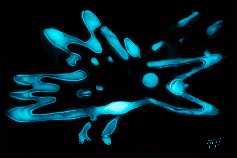 Je veux Je veux! Mu Art Bioluminescent Muriel Blondeau