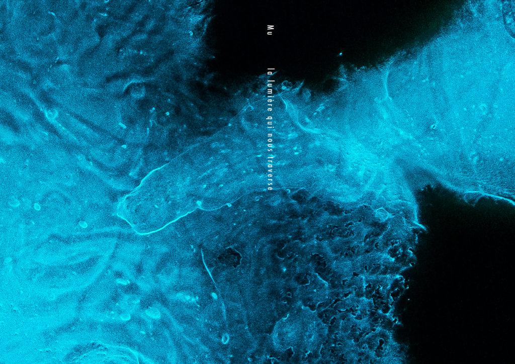 la lumière qui nous traverse Mu couverture Art Bioluminescent Muriel Blondeau